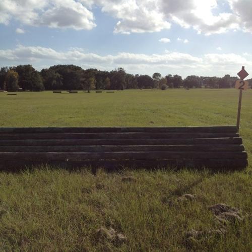 Fence 2 - Log panel