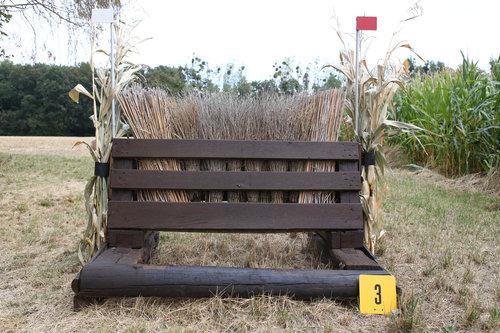 Fence 3 - Hexenbesen