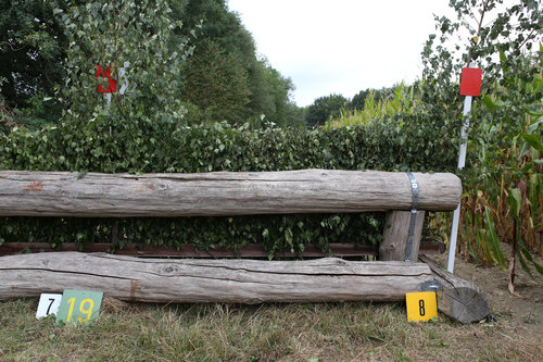 Fence 8 - Eichenhecke
