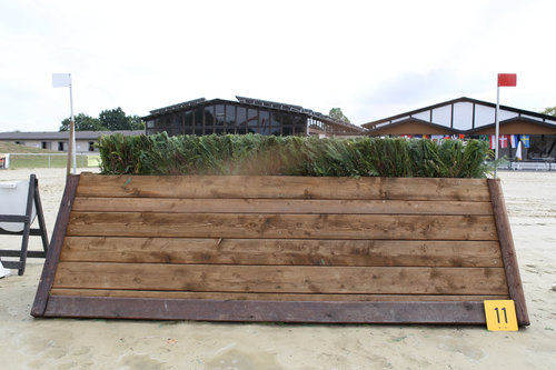 Fence 11 - Hecke