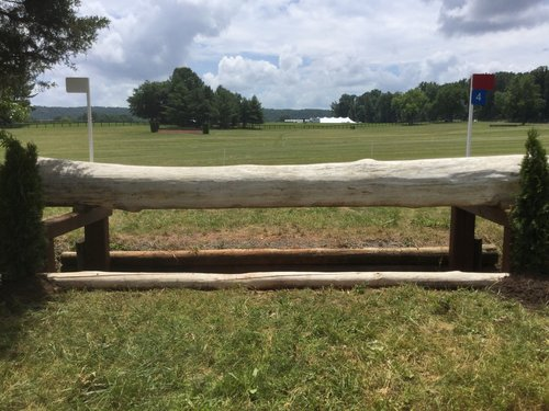 Fence 4 - Guardian Trakehner