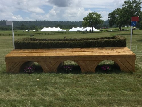 Fence 8 - Overlook Farm Brush Oxer