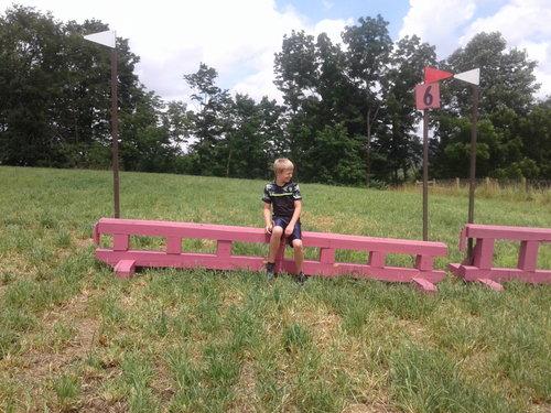 Fence 6 - Pink Ladder