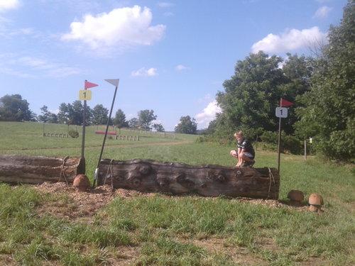 Fence 1 - Log