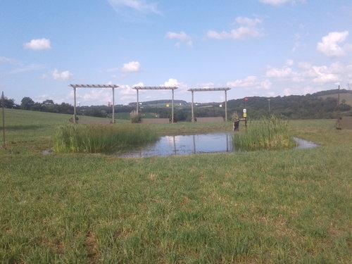 Fence 14 - Water crossing thru pond