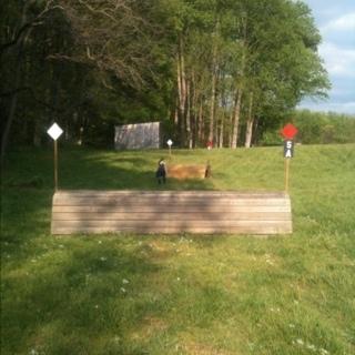 Fence 5A -