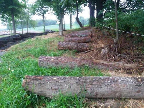 Fence 13 - Big Logs