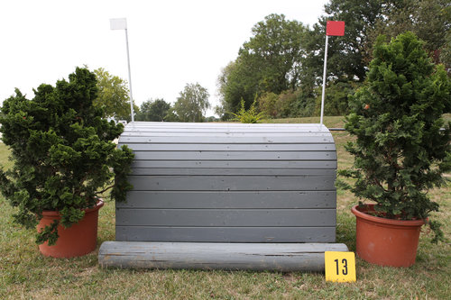 Fence 13 - Elefantenrücken