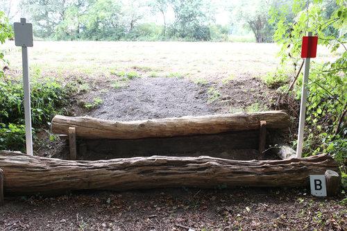 Fence 6B - Graben aus dem Wald