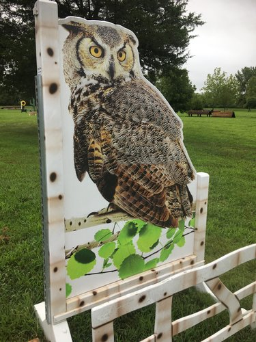 Obstacle 2 - Owl Oxer