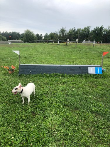 Fence 1 - A-Frame