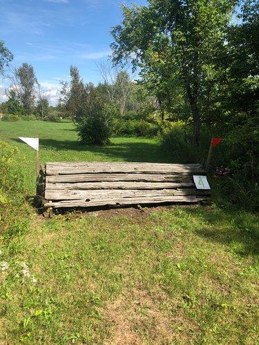 Fence 4 - Cedar Coop