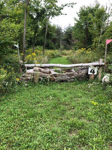 Fence 4 - Gnarly Log
