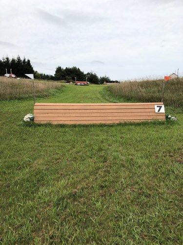 Fence 7 - Coop