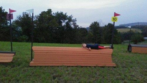 Fence 10 - Orange Roll Top