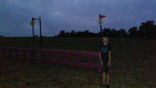 Fence 2 - Pink Ladder