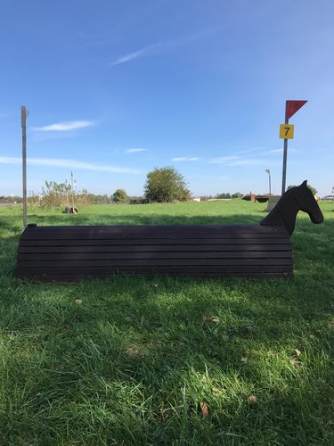 7 - Trojan horse