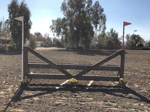 Fence 9 -
