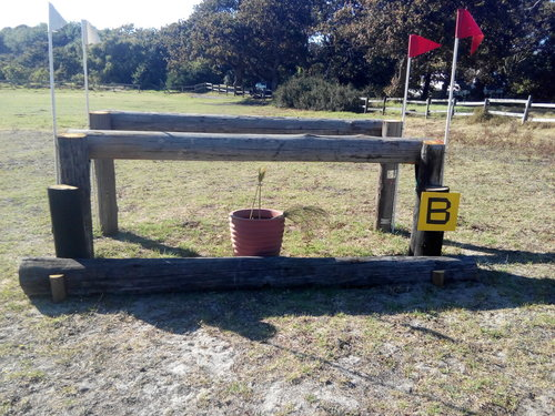 Fence 14B - Ride bold