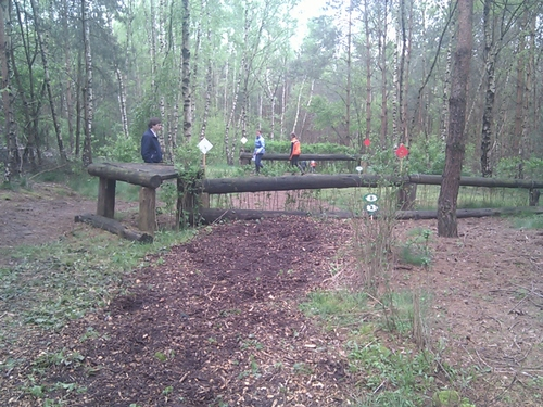 Obstacle 8A - Dubbele haag A