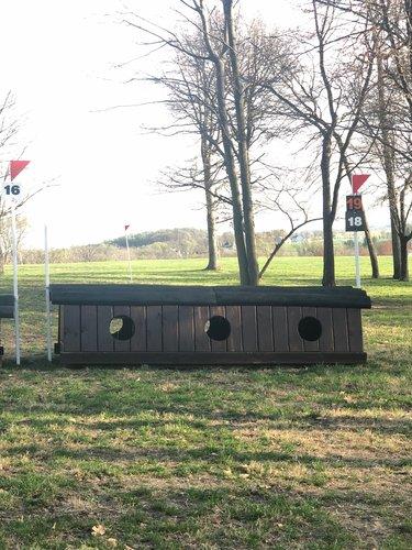 Fence 19 - Ark
