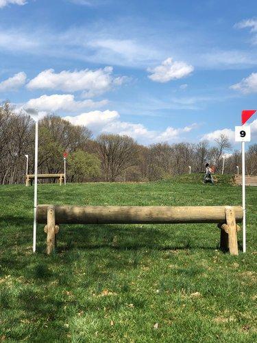 Fence 9 - Raised log