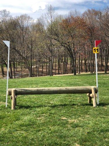 Fence 11 - Raised log