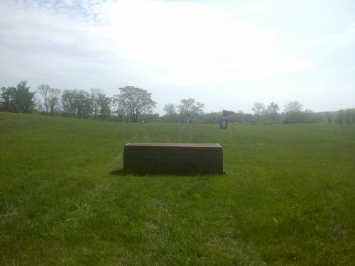 Obstacle 8 -