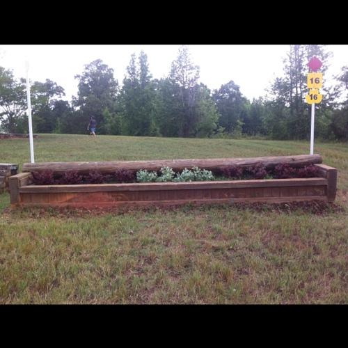 Fence 16 - Last jump!