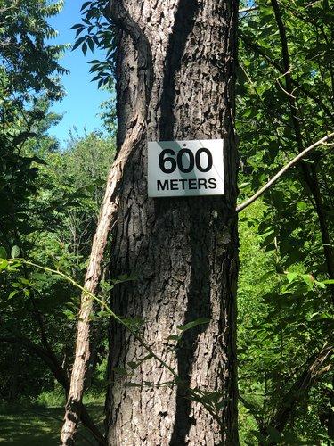 Fence 6 - 600 meters