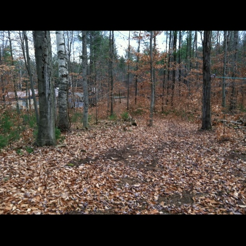 Hindernis 20 - Two trails form Y  left goes to woodshed behind trailer
