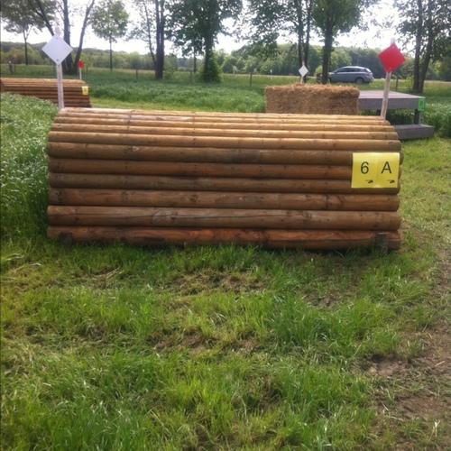 Fence 6A - Schweineruecken