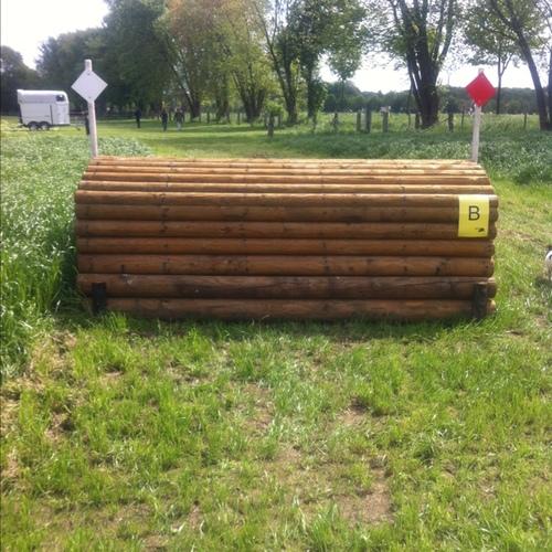 Fence 6B - Schweineruecken