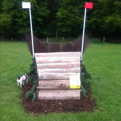 Fence 14 - Bullenkopp