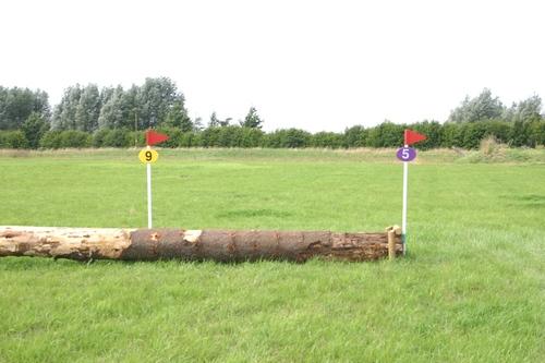 Fence 5 - Log