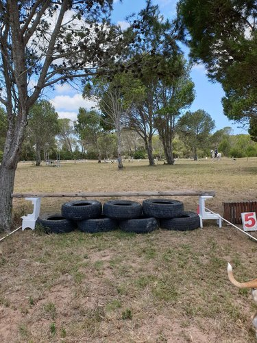 Fence 5 - Tyres