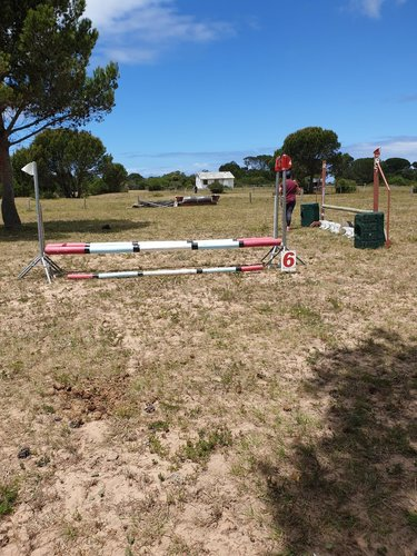 Fence 6 - Show jump