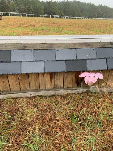 Fence 6 - Pigs Barn
