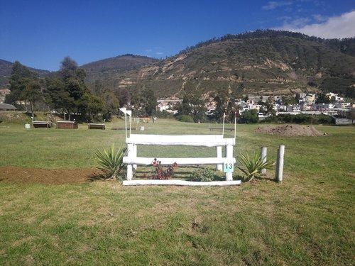 Fence 13 - Paralela blanca