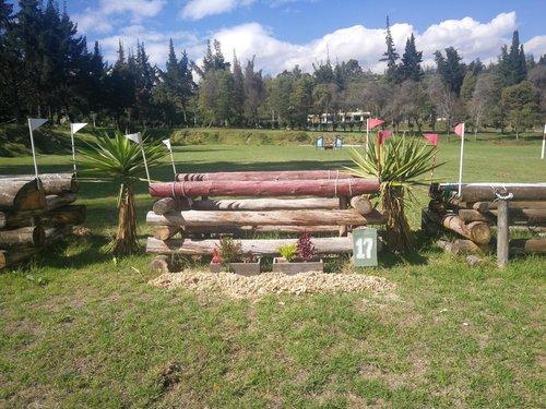 Fence 17 - Oxer de troncos