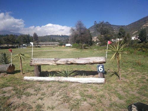 Fence 6 - Trakener