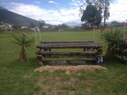 Fence 14 - Oxer de troncos