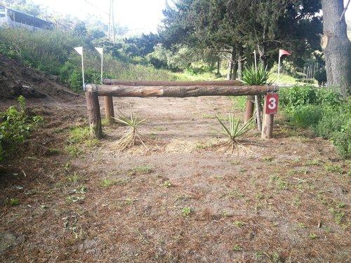 Fence 3 - Paralela