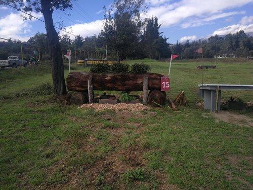 Fence 15 - Tronco
