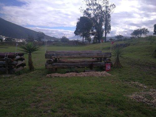 Fence 19 - Oxer con palos