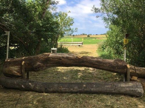Fence 3A - Kroget stamme