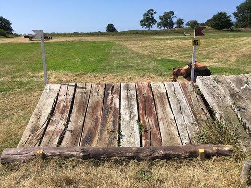 Fence 15 - Skihop