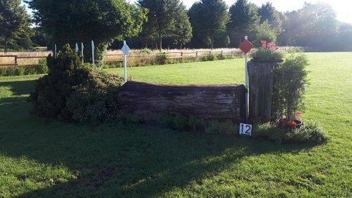 Fence 12 - Dunkler Baum