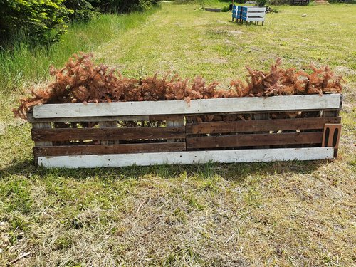 Fence 11 - Palle