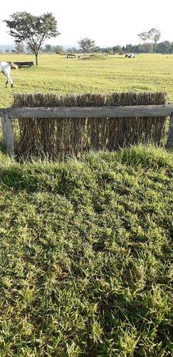 Fence 10 - Trackener